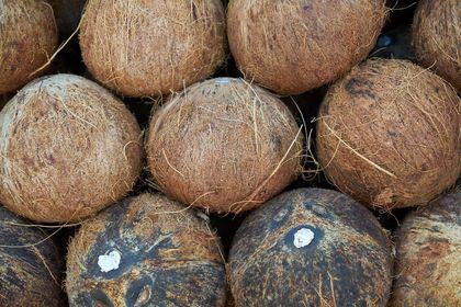 Што се случува ако пиете кокосова вода седум дена?